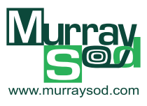Murray Sod Logo